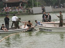 Bắt Cụ rùa ở Hồ Gươm