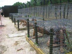 Chuồng cọp tại nhà tù Côn Đảo