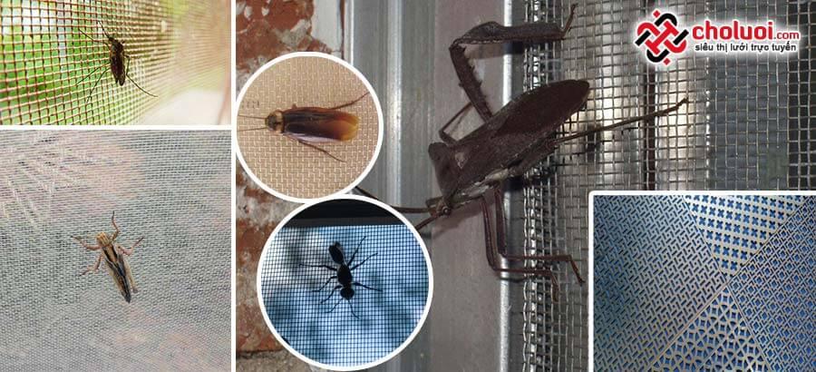Lưới chống côn trùng
